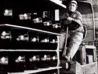 Al lavoro al magazzino imballo e spedizione prodotti.