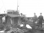 Marinai del peschereccio Cervoli della Magona. Anni '40