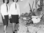 Escuela Técnica Enrique Rocca. Alumnas. 1966